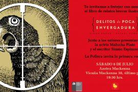 Delitos de poca envergadura presentación Rafael Edwards Simón Ergas