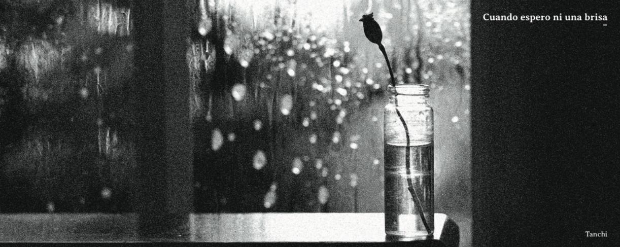 """Publicación y prólogo del poemario """"Cuando espero ni una brisa"""" de Tanchi (Cristián Villalobos Garnham)"""